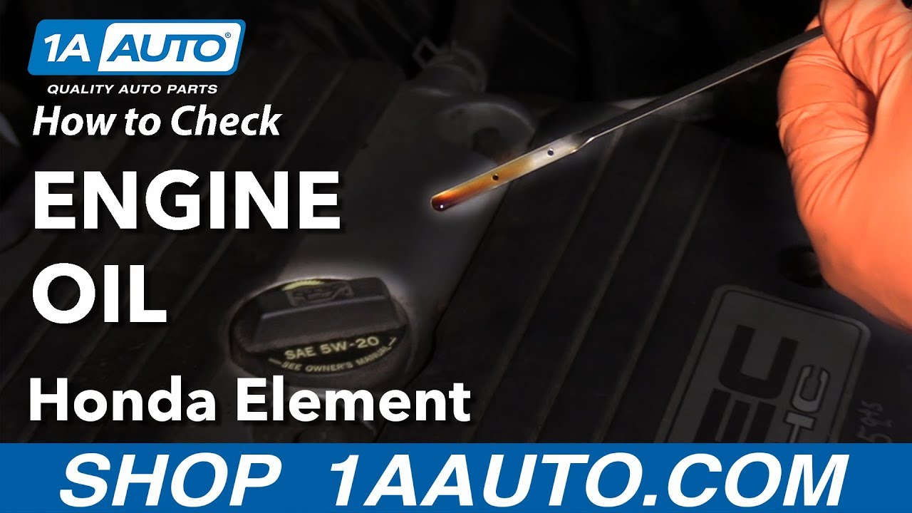 How to Check Engine Oil 03-11 Honda Element