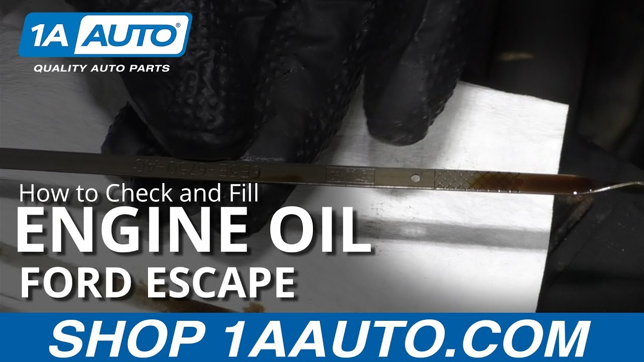How to Check and Fill Engine Oil 08-12 Ford Escape